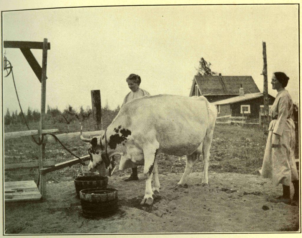 Danina Lanfear (l) and Ethelwynne French (r) on Lanfear-French Farm. From The Glamour of British Columbia by H. Glynn-Ward.
